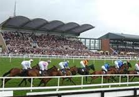 Fairyhouse live