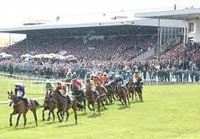Punchestown live
