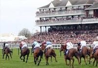 Scottish Grand National live