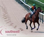 Southwell live