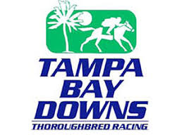 Tampa Bay Downs live